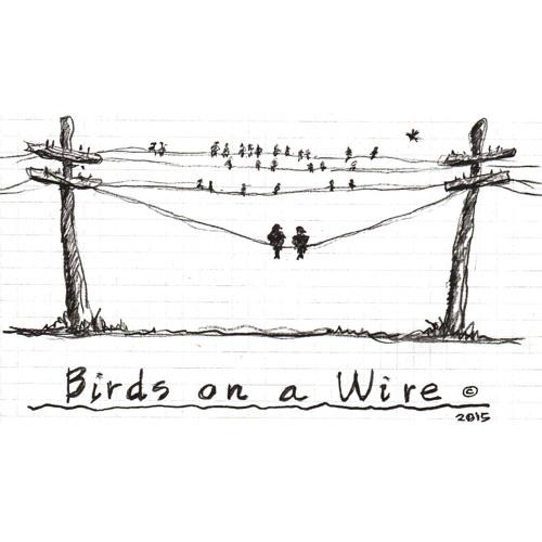 Birds On A Wire Ep. 51 w/guest Leslie Budewitz
