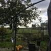 Forever Lost Sounds - Holland Farm & Bird Sounds (Binaural)