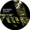 Skober - Black Sun [Terminal M]