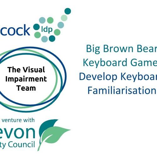 Big Brown Bear Keyboard Game
