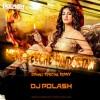 Mere Piche Hindustan Hai - Remix -DJPolash