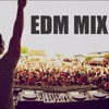New Electro & House Party Mix