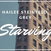 Hailee Steinfeld And Grey Ft Zedd Starving Cover By Alice Mp3