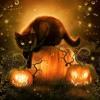 Halloween Psychic Readings 10 - 31 - 16