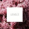 Levels Mp3