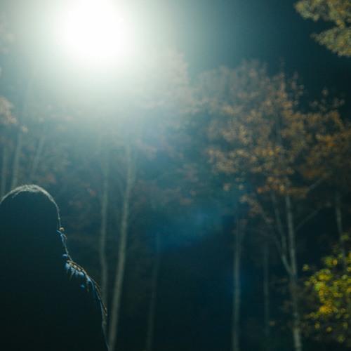 The Light Awakens