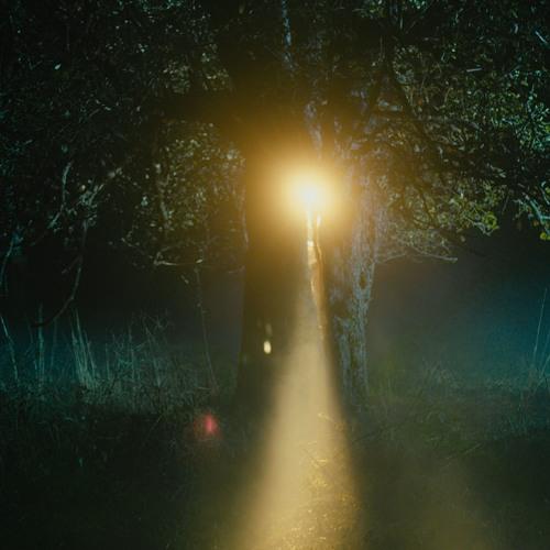 The Light - Credits