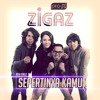 Download Lagu Zigaz - Sepertinya Kamu
