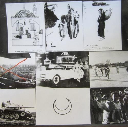 Development, Race, and the Cold War in Algeria | Muriam Haleh Davis