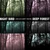 Night Bird (Don Alex Albert 7min Mix) - Deep Forest