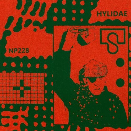 Hylidae- Darondo