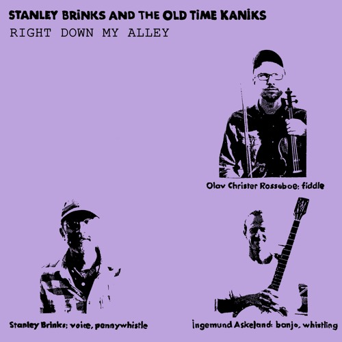 Stanley Brinks and The Old TIme Kaniks - Right Down My Alley
