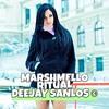 Marshmello - Ritual Ft. Wrabel (DeeJay Sanlos Remix)