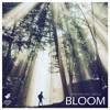Versonne - Bloom (feat. Jerztyle)