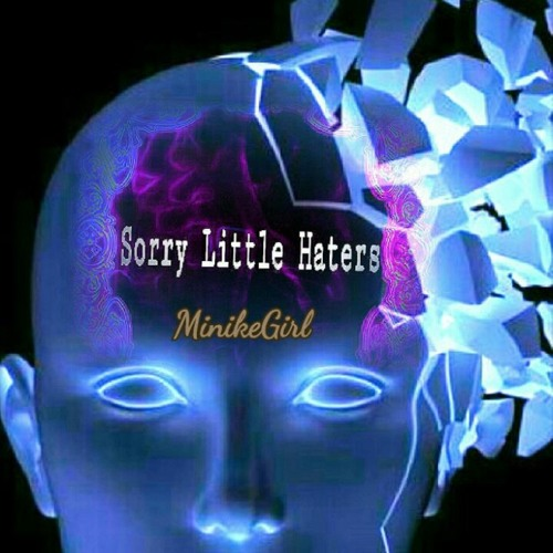 Sorry Little Haters