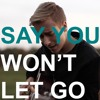Say You Won't Let Go - James Arthur (cover)