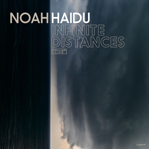 NOAH HAIDU - Infinite Distances