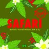 Safari ft. Pharrell Williams, BIA, Sky [IN BASS] [Dj Rayko] DEMO ( BUY = DESCARGA )