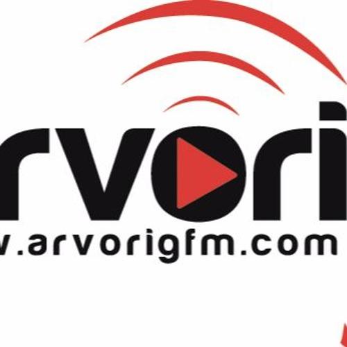 Julien au micro d'Arvorig FM