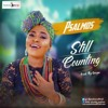 Psalmos – Still Counting