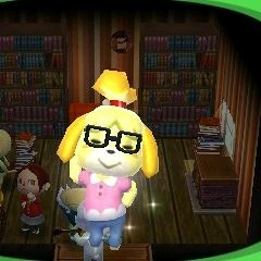 Animal Crossing Happy Home Designer- Downtown At Night