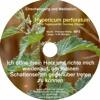 Hypericum Perforatum / Johanniskraut