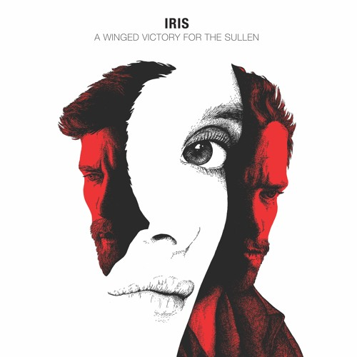 Image result for a winged victory for the sullen iris