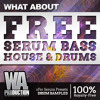 FREE Serum Bass House & Drums [100K YouTube Subscribers