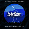 Calvin Harris ft. Rihanna - This Is What You Came For (feat. Rihanna) [Liam Keery Remix]