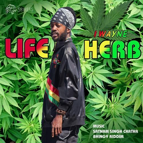 I Wayne - Life Herb