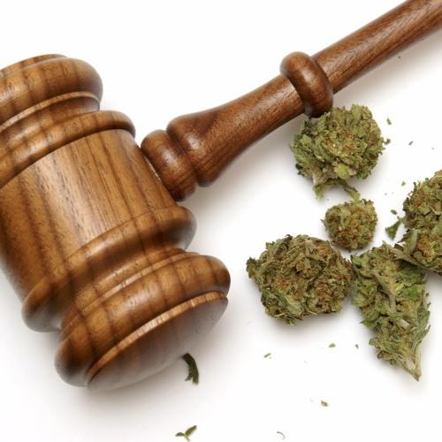 Cannabis Legislation Feat. Amy Jenkins