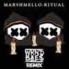 Marshmello Ft. Wrable - Ritual (WKND BAES REMIX)