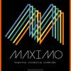 Maximo Review Demo