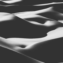 Stereobar :: Desert Mix Pt. 2 ::