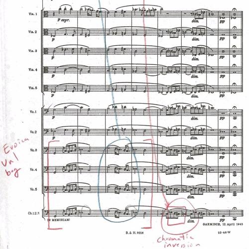 Richard Strauss Metamorphosen Performance at Aurora Festival