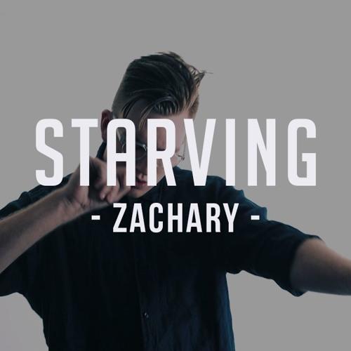 Starving (feat. Zedd) - Hailee Steinfeld, Grey (Cover)