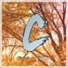 Chael - Fallen (Myriad Release)