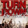 Dj Snake Feat. Lil Jon - Turn Down For What(GanZax Remix)