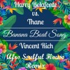 Harry Belafonte vs Thane - Banana Boat Song (Vincent Rich Afro Soulful House Remix)