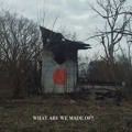 Shigeto What Are We Made Of? Artwork