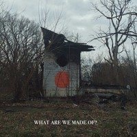 Shigeto - What Are We Made Of?