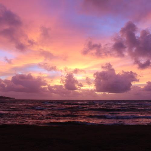Down in the DM: Blessings & Noni in Kauai, Hawaii