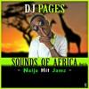 SOUNDS OF AFRICA MIX VOL.6 (Naija Hit Jamz)Feat Tekno, Maleek Berry, Mr. Eazi, Reekado Banks & More