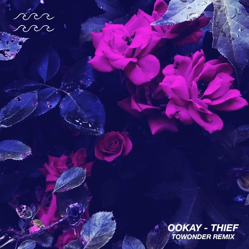Ookay - Thief (ToWonder Remix)