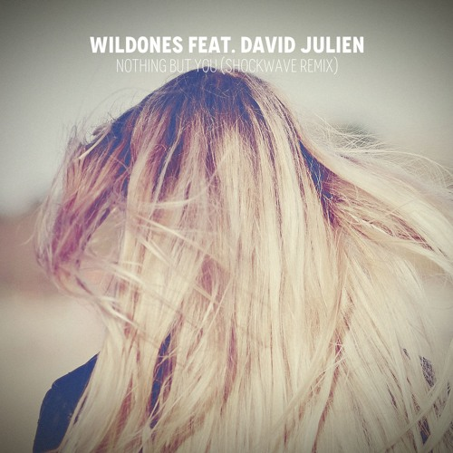 WildOnes Feat. David Julien - Nobody But You (Shockwave Remix) [FREE]