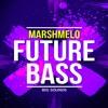 Big Sounds Marshmello Future Bass[SAMPLE PACK,CONSTRUCTION KITS,MIDI FILES]
