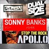 Sonny Banks Vs. Apollo 440 Vs. Fatboy Slim - Spice The Skank (DUAL SIZE Mash-Boot)