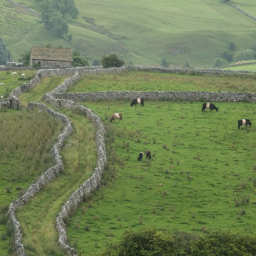 'Voices From the Land': Neil Heseltine & Leigh Weston, Hill Top Farm, Malham