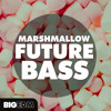 Marshmallow Future Bass [7 Construction Kits 80 Drums And Presets] 1 Beatport Top 10 Mp3