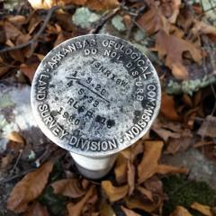 Pileated woodpecker drumbeat - soundscape, Flatside Wilderness 11/13/16